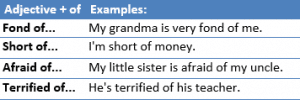 Adjective + preposition-example3